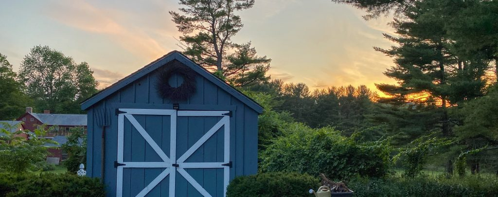 blue garden shed in a suburban backyard HALUD3N