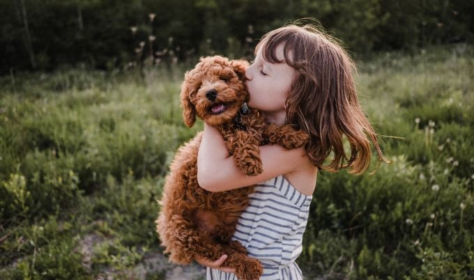 girl holding puppy gettyimages 680x402 1