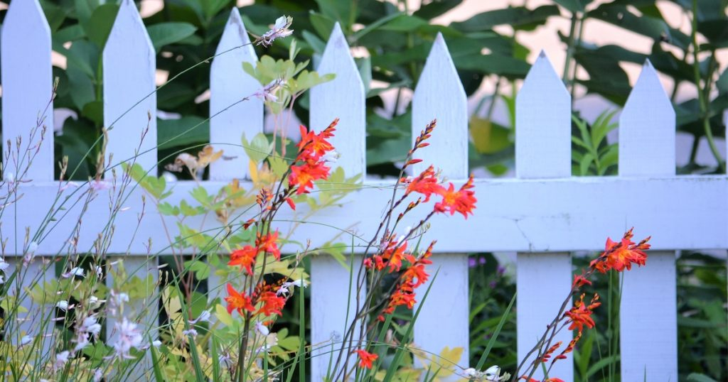 white picket fence in the garden nominated 2021 04 05 22 17 35 utc